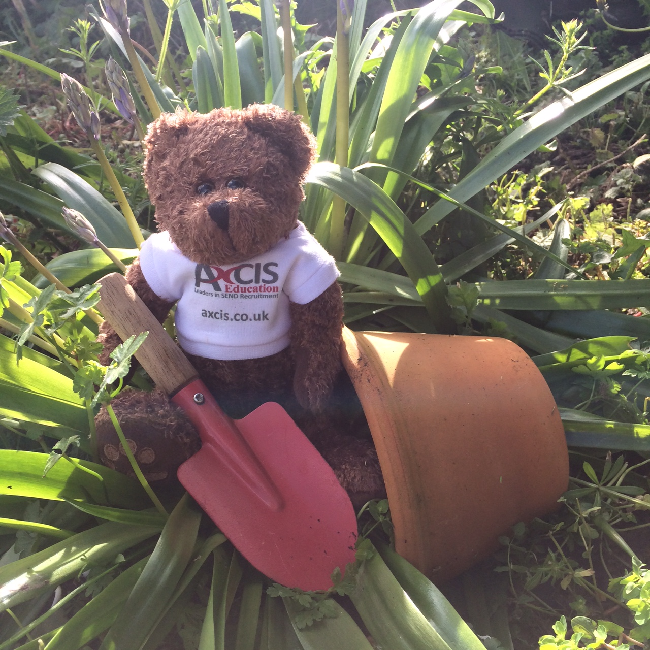 axcis andy loves to get out in the garden - Sensory Garden